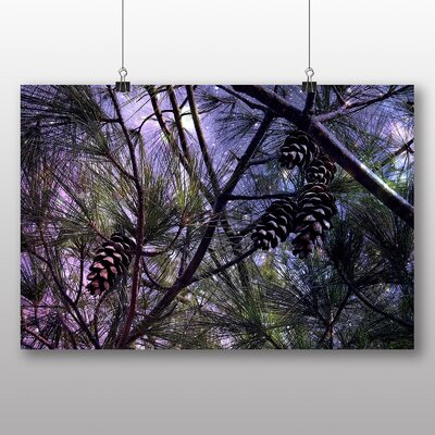 Big Box Art Conifer Tree Pine Cones No.2 Graphic Art Wrapped on Canvas