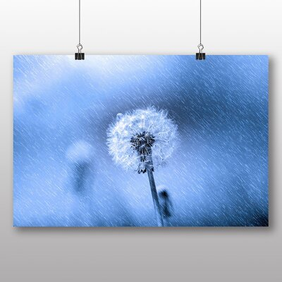 Big Box Art Dandelion in The Rain No.1 Photographic Print