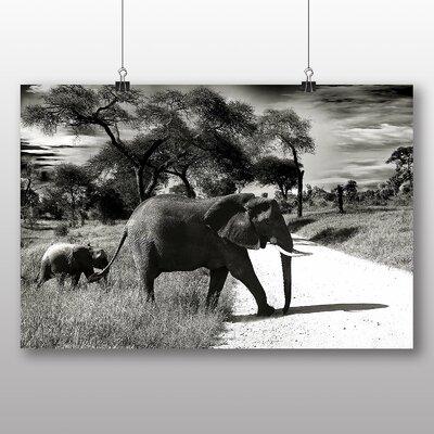 Big Box Art Elephant Photographic Print on Canvas