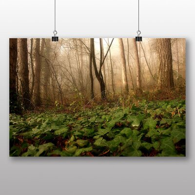 Big Box Art Forest Mist Photographic Print