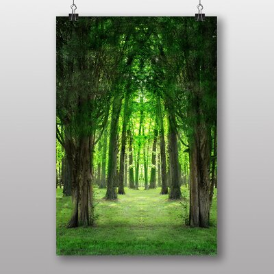 Big Box Art Forest Wood Trees Photographic Print Wrapped on Canvas
