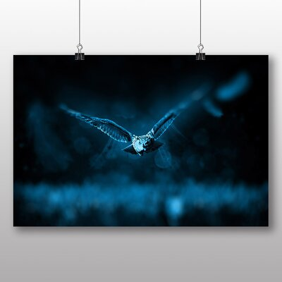 Big Box Art Flying Owl Photographic Print on Canvas