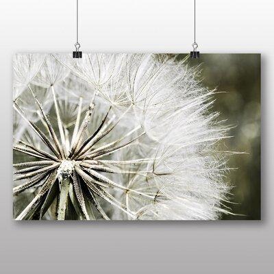 Big Box Art Dandelion Seeds Flower No.4 Photographic Print on Canvas