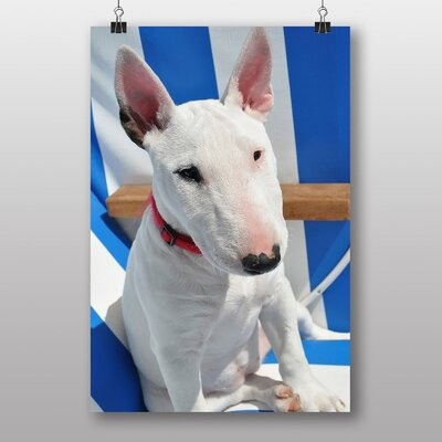 Big Box Art English Bull Terrier Photographic Print
