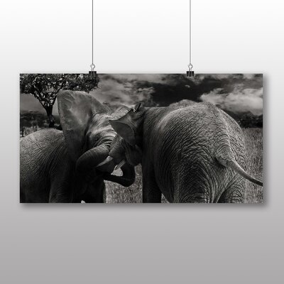 Big Box Art Elephants No.1 Photographic Print