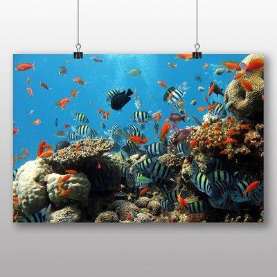 Big Box Art Fish Coral Reef Photographic Print on Canvas
