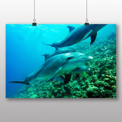 Big Box Art Dolphins Photographic Print Wrapped on Canvas