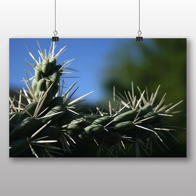 Big Box Art Fruit Chain Cholla Cactus Photographic Print Wrapped on Canvas