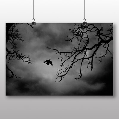 Big Box Art Flying Bird No.1 Photographic Print Wrapped on Canvas