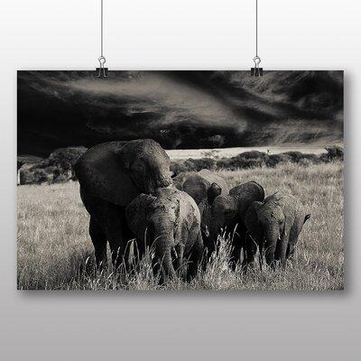 Big Box Art Elephant No.4 Photographic Print Wrapped on Canvas