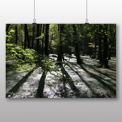 Big Box Art Forest Shadow Photographic Print Wrapped on Canvas