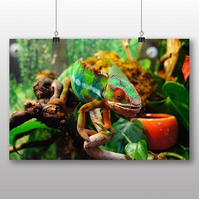 Big Box Art Chameleon No.4 Photographic Print