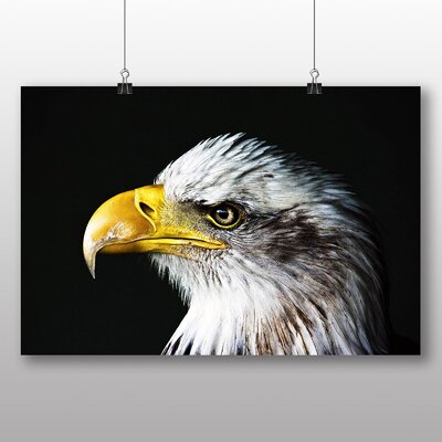 Big Box Art Eagle Photographic Print Wrapped on Canvas