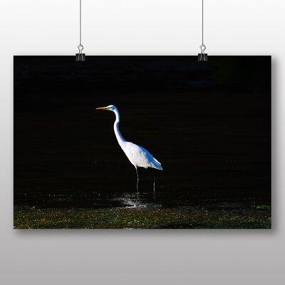 Big Box Art Egret Photographic Print on Canvas