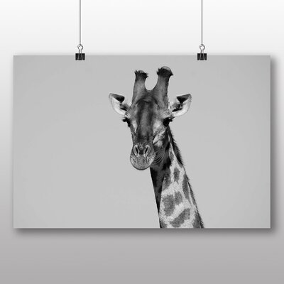 Big Box Art Giraffe Photographic Print