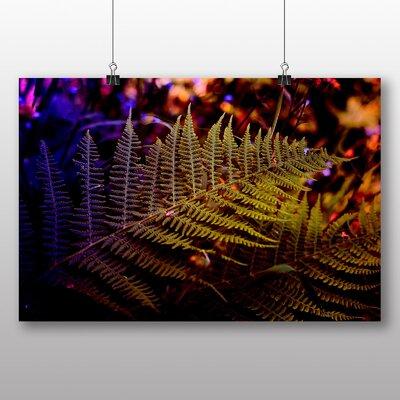 Big Box Art Fern No.3 Photographic Print