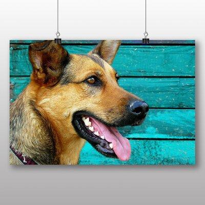 Big Box Art German Shepherd Dog No.2 Photographic Print on Canvas