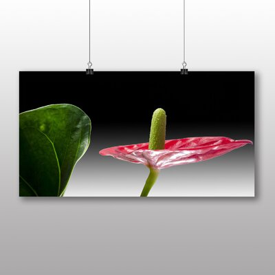 Big Box Art Flamingo Flower Photographic Print on Canvas