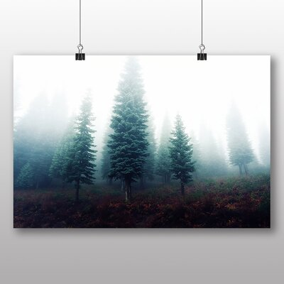 Big Box Art Fir Tree Forest No.2 Photographic Print Wrapped on Canvas