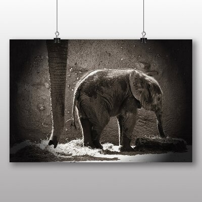 Big Box Art Elephant Mother and Baby Photographic Print