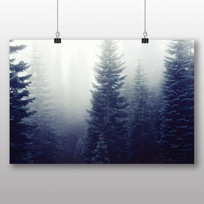 Big Box Art Fir Tree Forest Photographic Print Wrapped on Canvas