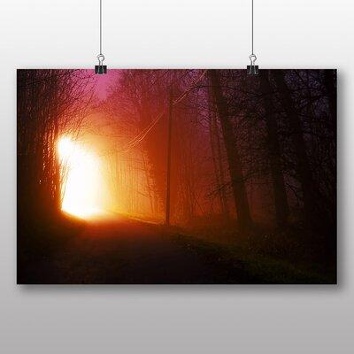 Big Box Art 'Forest Light at Night' Photographic Print
