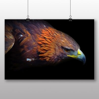 Big Box Art Eagle Bird Photographic Print Wrapped on Canvas