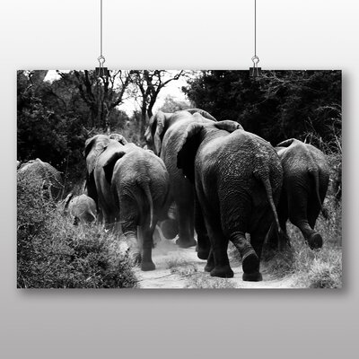 Big Box Art Elephants No.3 Photographic Print Wrapped on Canvas