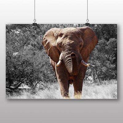 Big Box Art Elephant No.1 Photographic Print Wrapped on Canvas