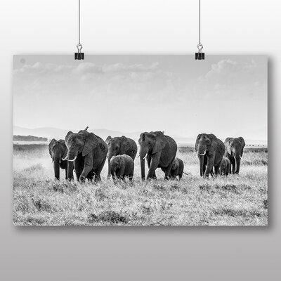 Big Box Art Elephants No.2 Photographic Print