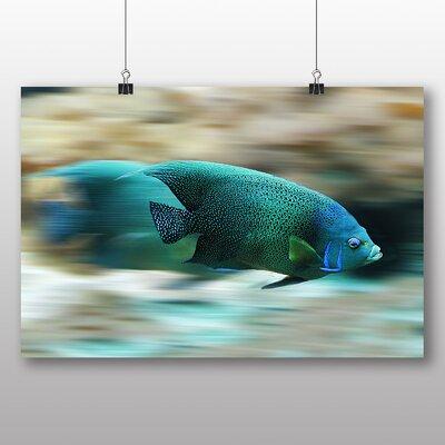 Big Box Art Fish No.2 Photographic Print
