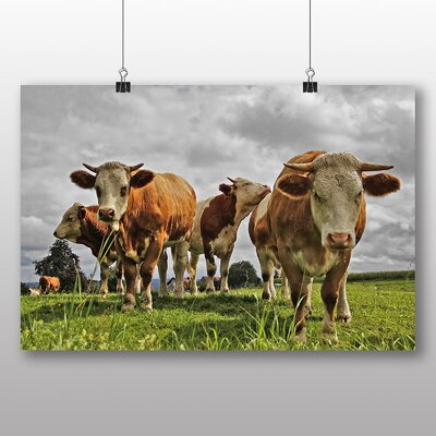 Big Box Art Cows No.2 Photographic Print Wrapped on Canvas