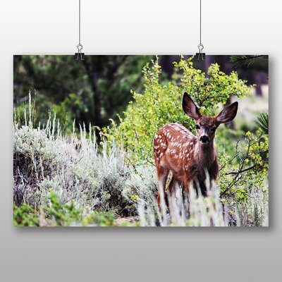 Big Box Art Deer in Forest Wood Photographic Print Wrapped on Canvas