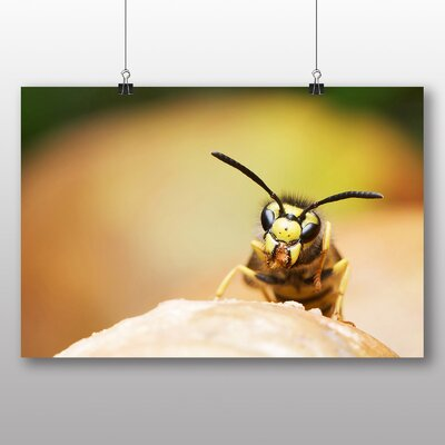 Big Box Art Wasp Photographic Print