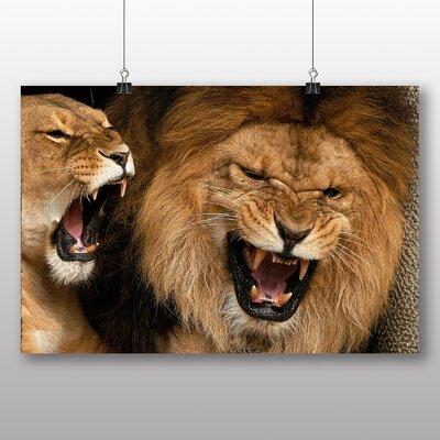 Big Box Art Fighting Lions No.1 Photographic Print