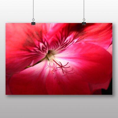 Big Box Art Geranium Pink Flower Photographic Print on Canvas