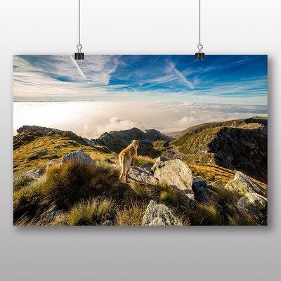 Big Box Art Dog on Hill Tops Photographic Print on Canvas