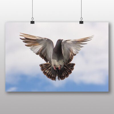 Big Box Art 'Flying Pigeon' Photographic Print