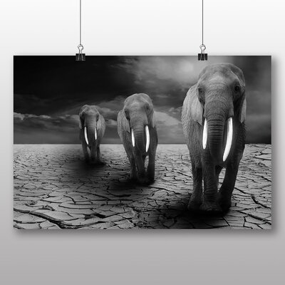 Big Box Art Elephant No.3 Photographic Print Wrapped on Canvas