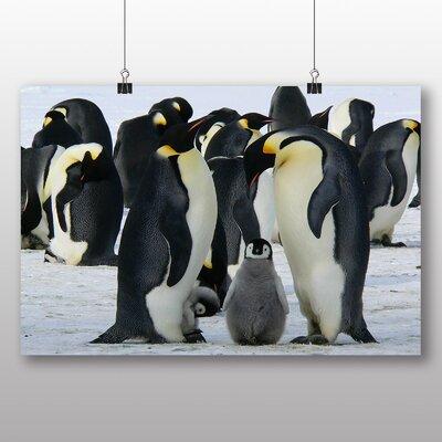 Big Box Art Emperor Penguins Photographic Print on Canvas