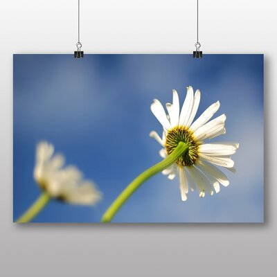 Big Box Art 'Flowers Reaching for the Sun' Photographic Print
