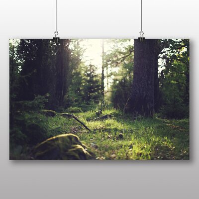 Big Box Art Forest Sunlight Photographic Print Wrapped on Canvas