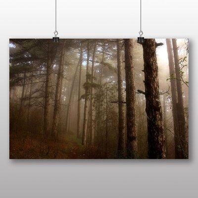 Big Box Art Forest Mist 1 Photographic Print on Canvas