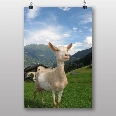 Big Box Art Goat in Austria Photographic Print