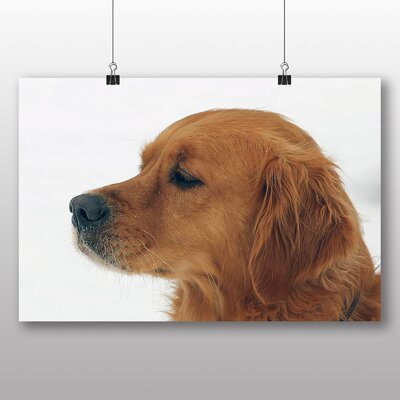 Big Box Art Golden Retriever Dog Photographic Print Wrapped on Canvas