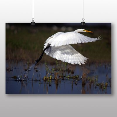Big Box Art Great Egret Photographic Print on Canvas