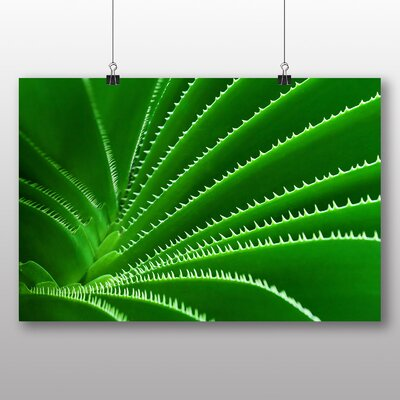 Big Box Art Green Cactus Graphic Art