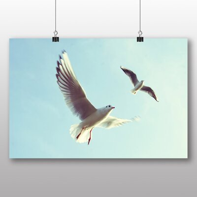 Big Box Art Gulls Photographic Print