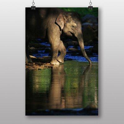 Big Box Art Elephant No.5 Photographic Print
