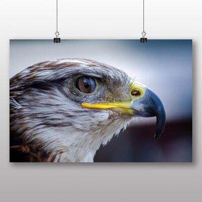 Big Box Art Falcon Photographic Print on Canvas